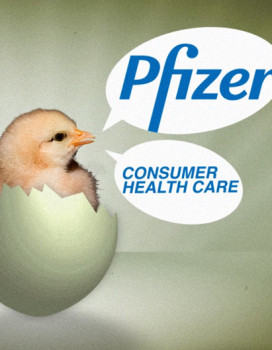 PFIZER RECRUITMENT